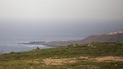 Runner (Leo Viera Fotografa) Tags: ocean red sea verde green sport landscape mar rojo paisaje run deporte jogging corriendo correr ocano laspalmasdegrancanaria sunner losgiles leoviera