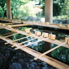 R1-01 -  Ise Shrine (redefined0307) Tags: film japan analog shrine  tradition  ise  mie    iseshrine bronicas2 zenzabronica kodakportra160