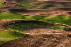 Washington Palouse (EdBob) Tags: steptoe steptoebutte steptoebuttestatepark palouse farm farmland farming agriculture agricultural pattern plowed plow plowing red green washington washingtonstate easternwashington abstract edmundlowephotography edmundlowe hills wheat rural country countryside whitmancounty colfax color colorful allmyphotographsare©copyrightedandallrightsreservednoneofthesephotosmaybereproducedandorusedinanyformofpublicationprintortheinternetwithoutmywrittenpermission america usa wwwedmundlowephotocom