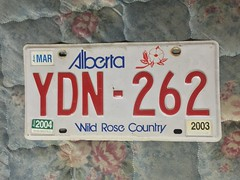 ALBERTA 2003-04 ---LICENSE PLATE #YDN-262 (woody1778a) Tags: woody licenseplate mytraders fortrade forsale tradelist numberplate woody1778 alpca collector