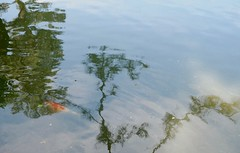 reflection (romypictures) Tags: japan garden pond hiroshima    shukkein