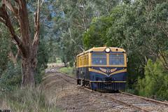 Walker (Dobpics O'Brien) Tags: victorian rail railway healesville victoria railcar walker valley yarra yvr railways vr railmotor 22rm