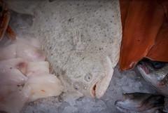 flat (pamelaadam) Tags: thebiggestgroup fotolog digital february winter 2015 food animal fish visions meetup aberdeen scotland