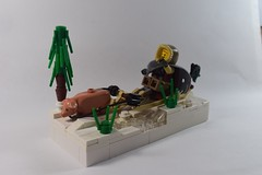 Winter Sledge (4) (emperor.willmot) Tags: winter castle pig lego medieval sled sleigh