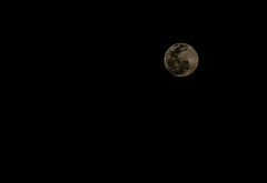 Full moon (hugocmcosta) Tags: cerrado hugocmcosta palmas riotocantins tocantins tocantnia