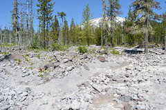 lahar Mount St Helens (David A's Photos) Tags: winter st washington july mount helens floods 2016 lahars