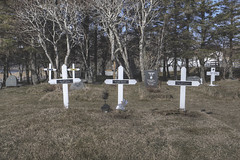 'Deceased' (Timster1973 - thanks for the 11 million views!) Tags: iceland icelandic land landscape landscapes beautiful tim knifton timster1973 timknifton exploration canon color colour travel trip graveyard graves grave deceased dead outdoor outdoors outside external exterior