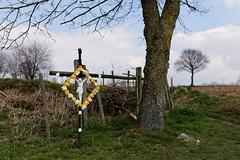 Cross (jmtennapel) Tags: white tree yellow easter landscape religious cross jesus culture garland boom dxo nl geel wit krans limburg landschap cultuur pasen religie honthem kruisbeeld netherlandsthe canon6d sigma50mmf14dghsm