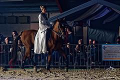 DSC_0107_DxO (NosChevaux.com) Tags: horses horse cheval pre chevaux paard paarden spectacle poney dressage frison quitation salonducheval hannut spectaclequestre