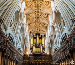 Norwich Cathedral organ and vault (timothyselvage) Tags: uk travel england church architecture photoshop photography amazing nikon cathedral unitedkingdom norfolk sightseeing chapel organ norwich gb hdr highdynamicrange anglican protestant touristattractions fineartphotography verticalpanorama lightroom 2014 architecturalphotography historicbuildings churchofengland houseofworship photomatix digitalblending 2013 houseofgod religiousbuilding historicattractions placestovisit ribbedvault localattractions vertorama nikkor1424mmf28 32bithdr timothyselvage wwwtimothyselvagecom norwichcathedralchurch infotimothyselvagecom timothyselvagecom