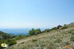 _AKU3961 (Large) (challenge trails de provence) Tags: trail gran 2015 lubron