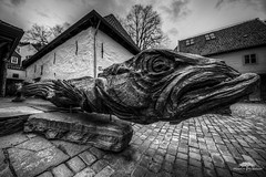 Stockfish sculpture (huddart_martin) Tags: sculpture fish norway norge wooden bergen bryggen hdr stockfish stockfisk