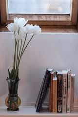 White tulips & books (Ervins Strauhmanis) Tags: flowers white house plant flower home window book tulips interior books health tulip vase medicine windowsill astrology ayurveda vedic