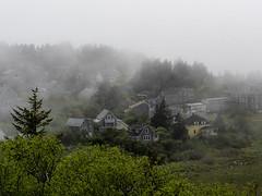 Fog, Monhegan Island, Maine (bdnils) Tags: spring outdoors monheganisland maine landscape fog