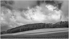 Light, Clouds & Shadows (Wayne Interessiert's) Tags: trees sky bw white black monochrome clouds landscape weide wolken ciel prairie nuages paysage landschaft wald bume arbre bosquet smallwood saule