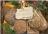 I Coglioni di Mulo ... Tipico Prodotto Italiano ... (krisdecurtis) Tags: italy canon italia 300d campania canon300d kris assisi umbria salumi caserta 2016 maddaloni krisdecurtis coglionidimulo