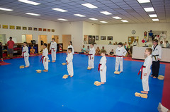 2016 Black Belt Test__DSC5133_73 (allen_cart) Tags: test white black belt tiger taekwondo whitetiger blackbelttest 2016