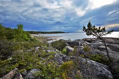 The coast of Uppland (explored) (RdeUppsala) Tags: sea sky costa seascape primavera clouds landscape coast mar spring sweden outdoor paisaje baltic cielo sverige marino suecia stersjn vr landskap kust moln uppland bltico hllns kapplasse