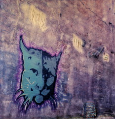 Puma 5 (tobysx70) Tags: california ca street pink toby urban black brick art mill film television wall set cat movie polaroid sx70 photography graffiti la tv los alley mural shoes paint downtown industrial time angeles turquoise magenta manipulation can spray commercial instant sonar puma hancock zero dtla tz between emulsion