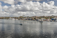 Newport Harbor (Jodi Newell) Tags: water skyline clouds sailboat canon boats sailing stormy newportbeach palmtrees shore southerncalifornia balboa newportharbor jodinewell jodisjourneys jodisjourneysphotosgmailcom