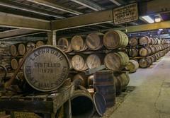 DSC07346 (itspoots) Tags: tour barrels islay whisky scotch laphroaig