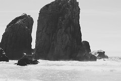 (aclaudine) Tags: sea wild blackandwhite praia beach portugal nature water digital canon rocks sintra naturallight da ursa