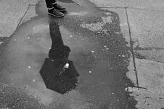 (Dr. No 99) Tags: street rain streetphotography grau spiegelung regen regenschirm monoton