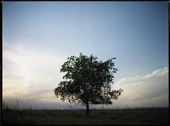 Cherry Creek (PJB-DENLANYC) Tags: nature cherrycreekstatepark kodak portra mamiya m645 80mmf19