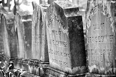 Nikon D500 - DSC_0308-02s-BW (dojoklo) Tags: cemetery ma book nikon tombstone tricks example howto tips use sample gravestone setup guide manual mass concord setting learn d500 sleepyhollow quickstart fieldguide nikond500 massachusettstutorial