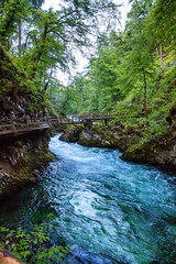 160517_074509_AB_3794 (aud.watson) Tags: europe slovenia vintgargorge radovariver radovnavalley gorge river rocks walkway bridge