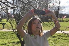 Sadie taking a photo (Heart felt) Tags: winter light newzealand children masterton earlyspring wairarapa springiscoming henleylake