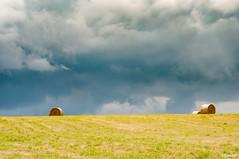 15072016-_DSC0014 (vidjanma) Tags: horizon nuages boules foin