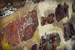 Danielle Was Here (MTSOfan) Tags: graffiti bridge danielle brick