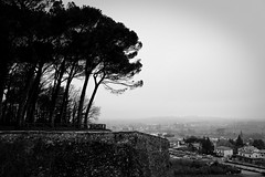 Arezzo (mappett) Tags: arezzo leica m9 summilux 35mmf14 asph toscana