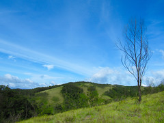 Nature calling....... (yadhukrishnan512) Tags: nature sky blue green gogreen savenature saveearth photography