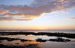 Sunrise start (obsmon) Tags: scarborough northeastcoast sony nex 5n sel18200