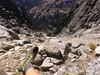 IMG_1419 (dholcs) Tags: pnw mountaineering stuart mtstuart backcountry wa