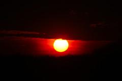 Sunset in Darfeld, Germany, 14-04-2015 (betadecay2000) Tags: winter sunset red sky orange sun rot sol fog germany star march spring zonsondergang yellwo tramonto sonnenuntergang nebel foggy himmel tags gelb wald  mrz frhling solnedgang zalazaksunca puestadelsol gnbatm coucherdusoleil 2015 rosendahl zpadslunce zachdsoca  neblig hochnebel darfeld hinzufgen   20032015   prdosol