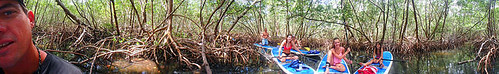 4-22-15-Norman-and-Family-lido-mangrove-tunnels 14