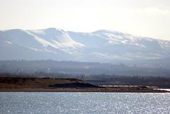 Sun, Sea and Snow (Callum's Buses & Stuff) Tags: sun snow west edinburgh sunny hills forth seen cockenzie pencaitland