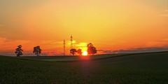Abendrot (Erich Hochstöger) Tags: trees sunset panorama field clouds landscape lumix austria evening abend österreich sonnenuntergang o feld wolken hills panasonic landschaft bäume niederösterreich hdr abendsonne abendrot electricitypylon abendstimmung hochspannungsleitung loweraustria mostviertel fz150 hügelland