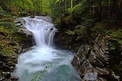Stream waterfall (enzo rettori) Tags: water landscape waterfall spring stream tuscany abetone