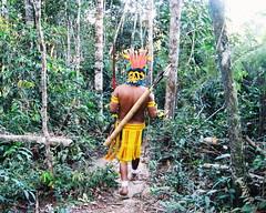 Aldeia Quatro Cachoeiras (fergprado) Tags: travel brazil man nature brasil culture floresta homem arco florest cultura tribo indigenous aldeia flecha ndio cocar idigena