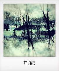 """#DailyPolaroid of 31-3-16 #185 • <a style=""""font-size:0.8em;"""" href=""""http://www.flickr.com/photos/47939785@N05/26848090175/"""" target=""""_blank"""">View on Flickr</a>"""