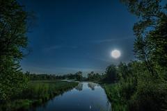 Night Moon Shine (ruimc77) Tags: light usa moon pine night mi creek ed noche nikon michigan low astro luna noturna astrophotography astrofotografia if nocturna lua noite fulton f28 moonscape bower ucm 14mm samyang as d810 rokinon astrometrydotnet:status=failed astroscape astrometrydotnet:id=nova1561504