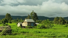 countryside near Banteay Srei (Kelly Rene) Tags: house storm home landscape countryside cambodia southeastasia traditional hill tropical kh siemreap indochina banteaysrei kulenhills