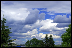 Chmury / clouds 18_06_2016 (dariusz_lipinski) Tags: park flowers trees sky sun colour nature beauty clouds fun photography europa europe different wind joy poland polska fotografia kwiaty inny zabawa soce przyroda kolor wabrzych chmury niebo walbrzych drzewa rado wiatr pikno lowersilesia dolnylsk dariuszlipinski dariuszlipiski dariuszlipiskiwabrzych dariuszlipinskiwalbrzych