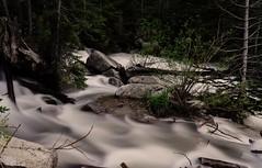 unbridled rush (Alvin Harp) Tags: longexposure trees nature june forest river utah stream sony natur le littlecottonwoodcanyon springrunoff 2016 mountainstream naturesbeauty silkywater teamsony sonya7rii fe24240mm sonyilce7rm2 alvinharp