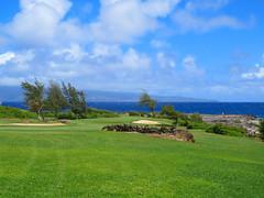 Molokai from Kapalua (altfelix11) Tags: ocean hawaii maui pacificocean golfcourse kapalua molokai makaluapunapoint