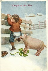Antique Postcard - Pig Snatching Boy, Four-Leafed Clover (Brynn Thorssen) Tags: pink boy white snow green hat socks farmhouse barn fence four climb pig leaf spring long boots farm tan biting climbing chase bite catch torn tear clover johns underpants curlytail longjohns fourleaf fourleafedclover curledtail curlytailed